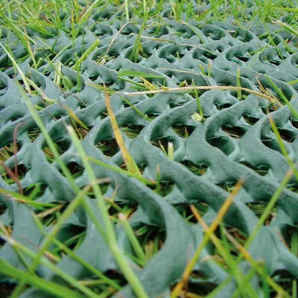 Rasenschutzgitter Premium Noor grün 60x80cm